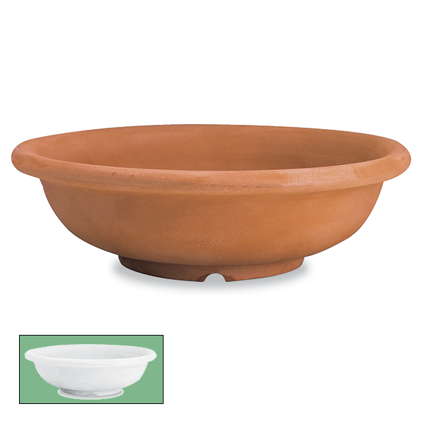 Advantay Gardenia Ciotola Shallow Bowl Planter